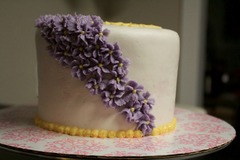 Contact: Type & Cakes