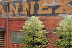 Rent: The Annex