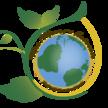 Mrsmurrys logo3